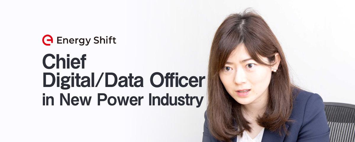 新しいエネルギーの世界には「CDO」が必要だ 鍋島勢理 CDO Club Japan
