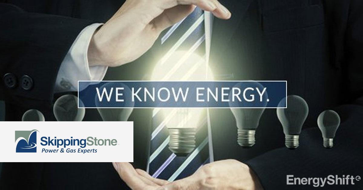 スキッピングストーン、電力・ガスのリスク管理業務の無料ワークショップ