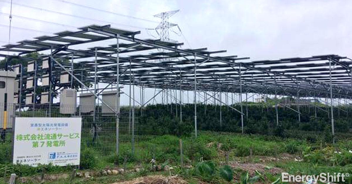 ソーラーシェアリング(営農型太陽光発電)、2019年度661件 過去最高を更新