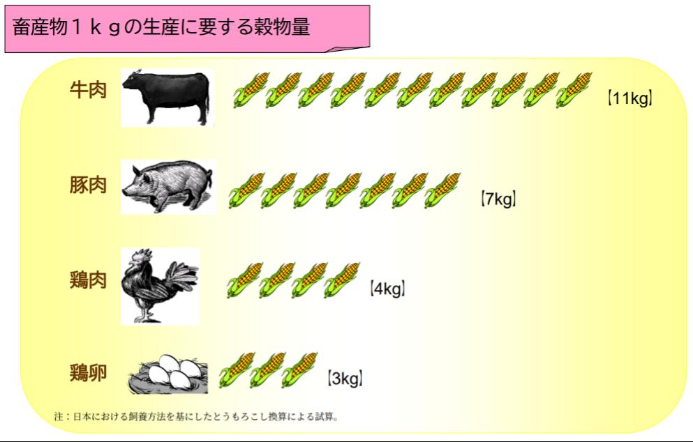食料問題の現状と課題